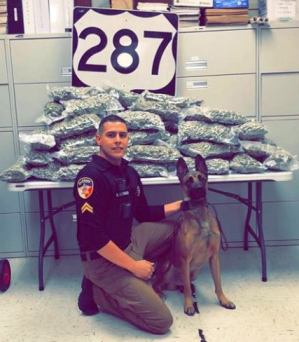 Drug Dog Alik marijuana bust