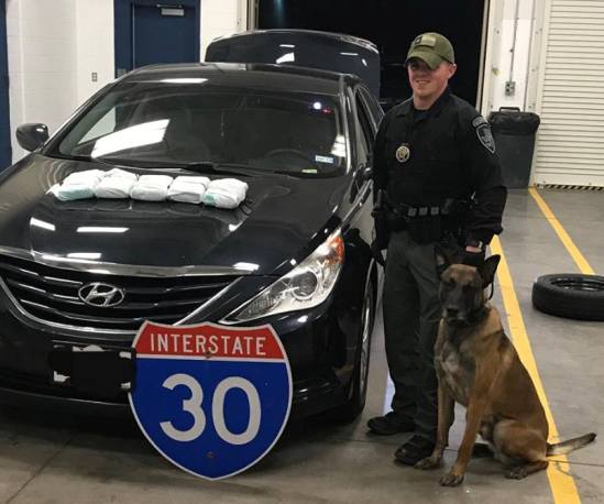 police dog chiv drug bust