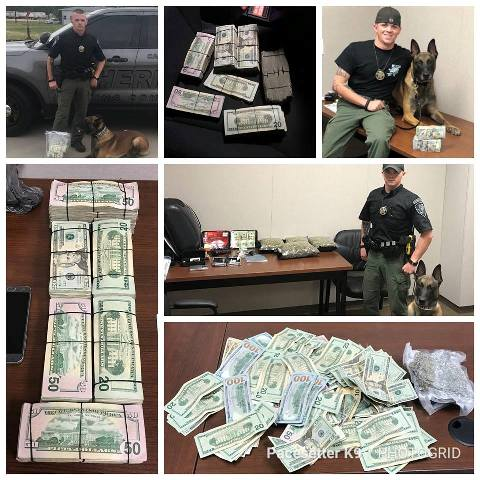 Police Dog Chiv currency bust