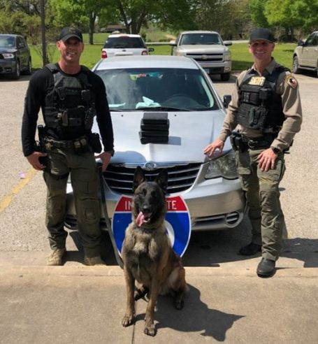 dual purpose police dog Kolt drug bust