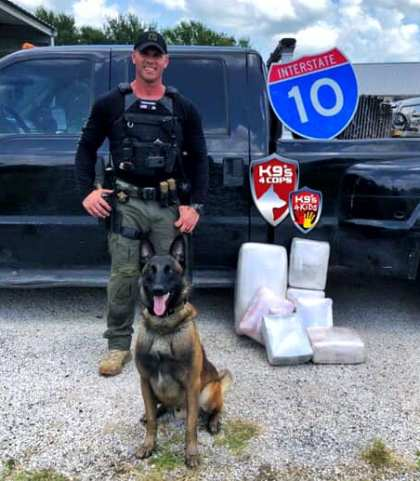 dual purpose police dog drug bust K9 Kolt