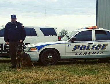 Liberty K Dog Training