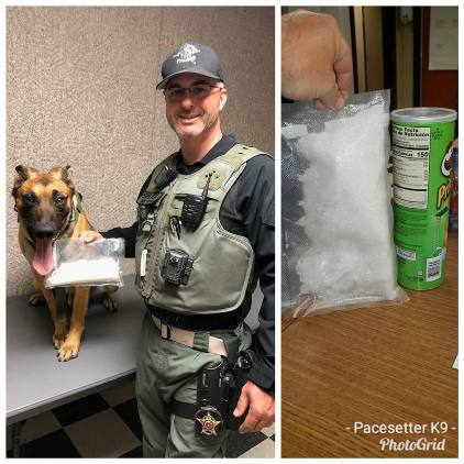 Drug Dog Bust K9 Rico