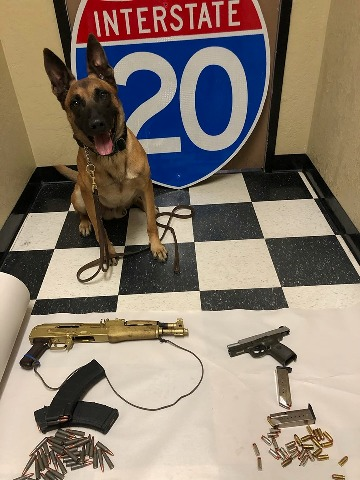 Dual Purpose Police Dog Rico