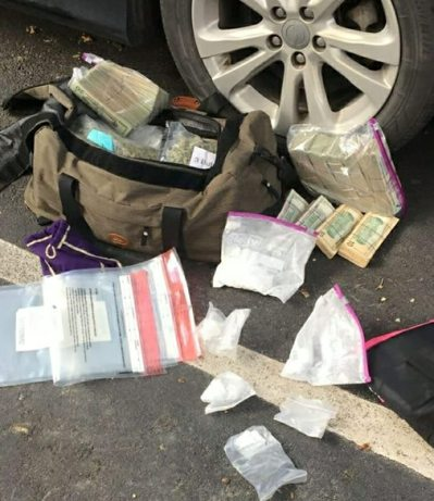 Dual Purpose Dog Warrant Bust